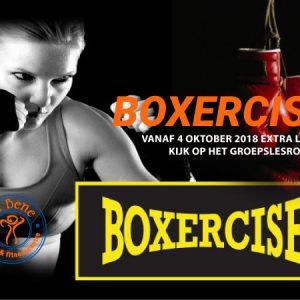 BOXERCISE-4-OKT-VA-BENE-FIT